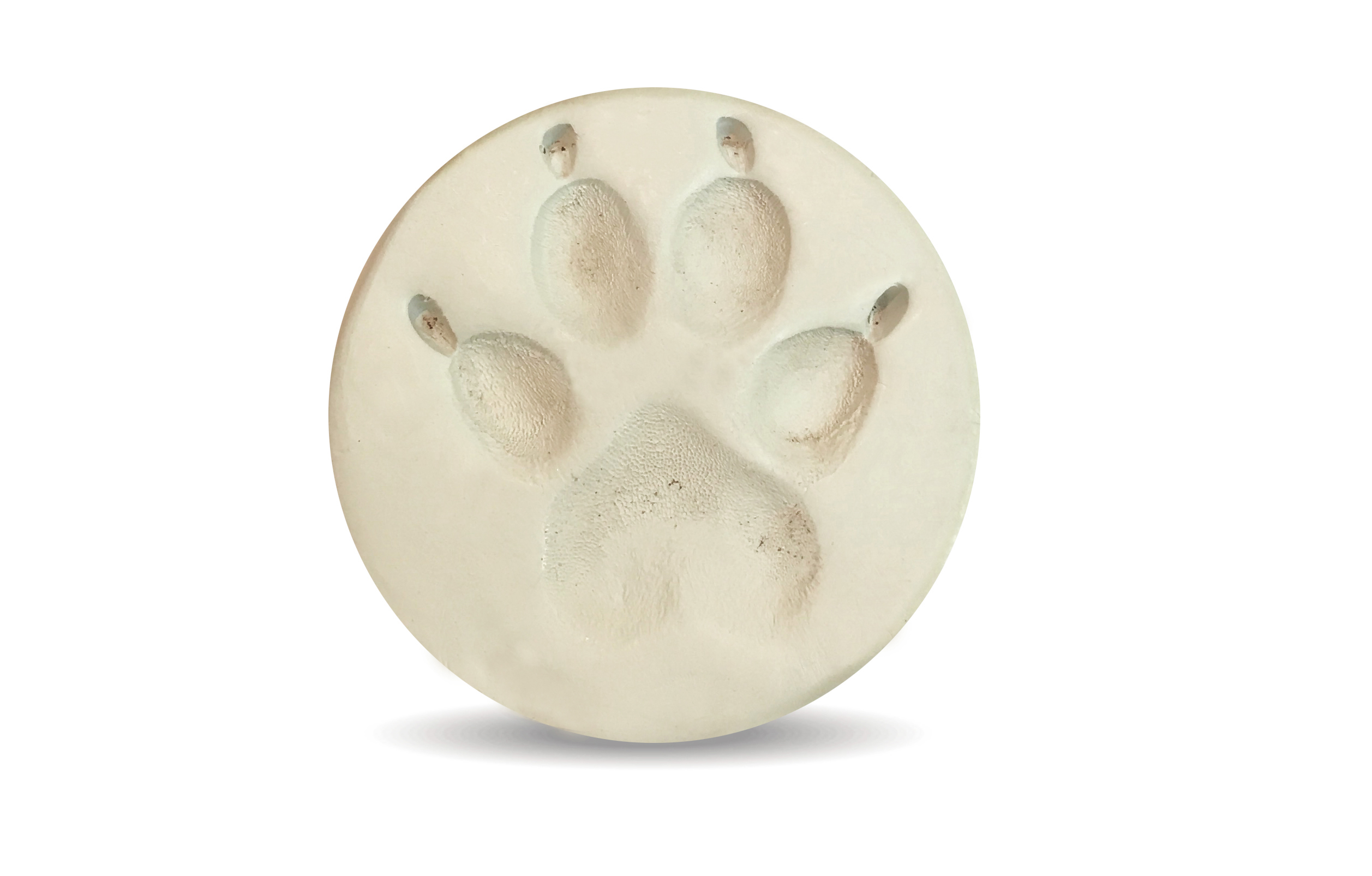 Clay Paw Print Image